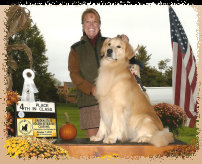 gold_love_goldens_website008002.jpg